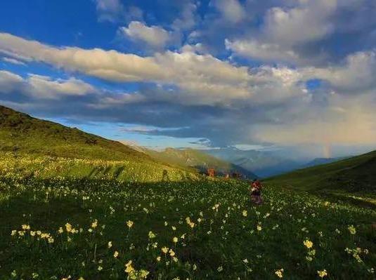 最美九顶山,云海的故乡花的海洋