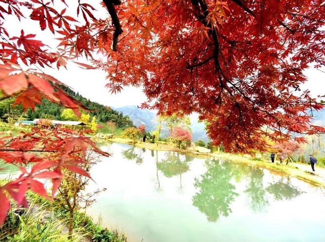 10月13日相约红枫岭