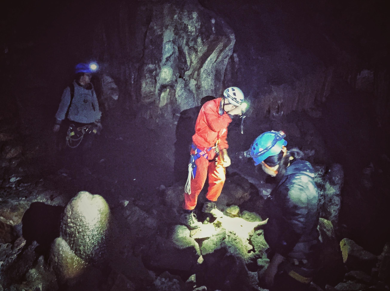 元旦|探秘多循环地下洞穴,了解未知世界