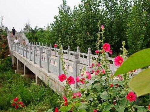 鹤壁山城区枫岭公园健走跑步活动