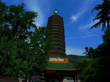 北京灵光寺每周六7.15朝山拜忏祈福活动