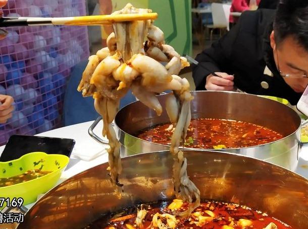 【吃霸王餐。美蛙】今晚盐市口吃