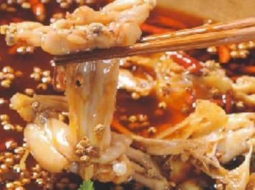 【吃美蛙鱼头。约饭】今晚美食 科华北路吃