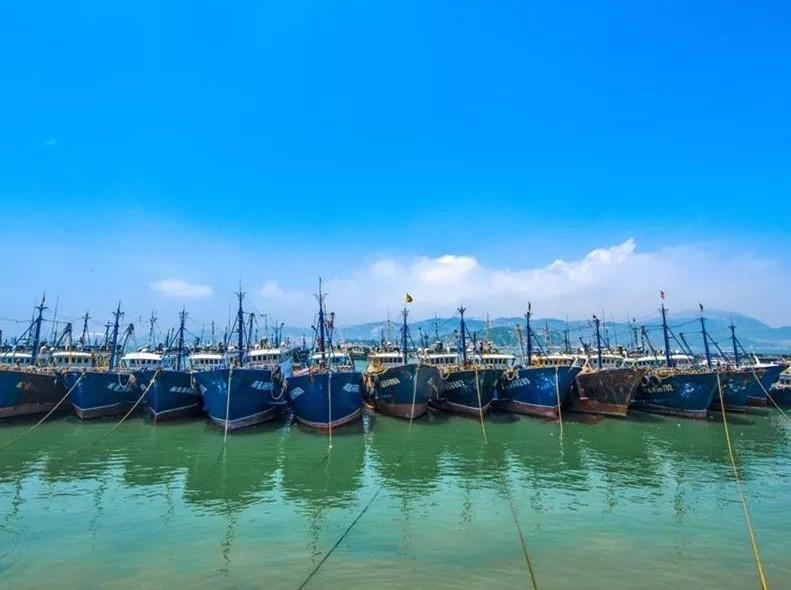 【周八】浯屿岛、海鲜大咖特价纯玩一日游