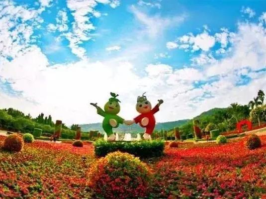 【周八】东南花都花博会+云洞岩一日游