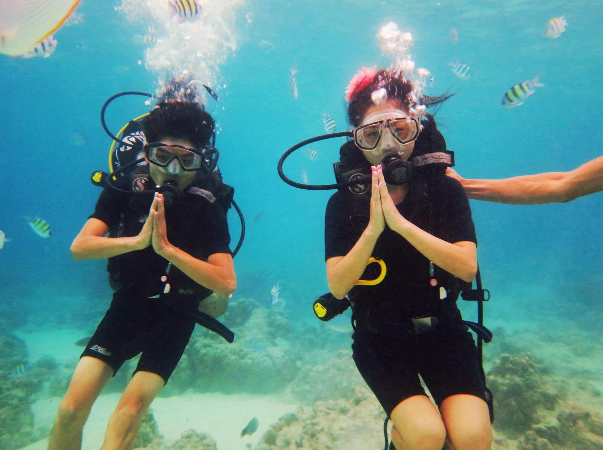 南澳珊瑚潜水