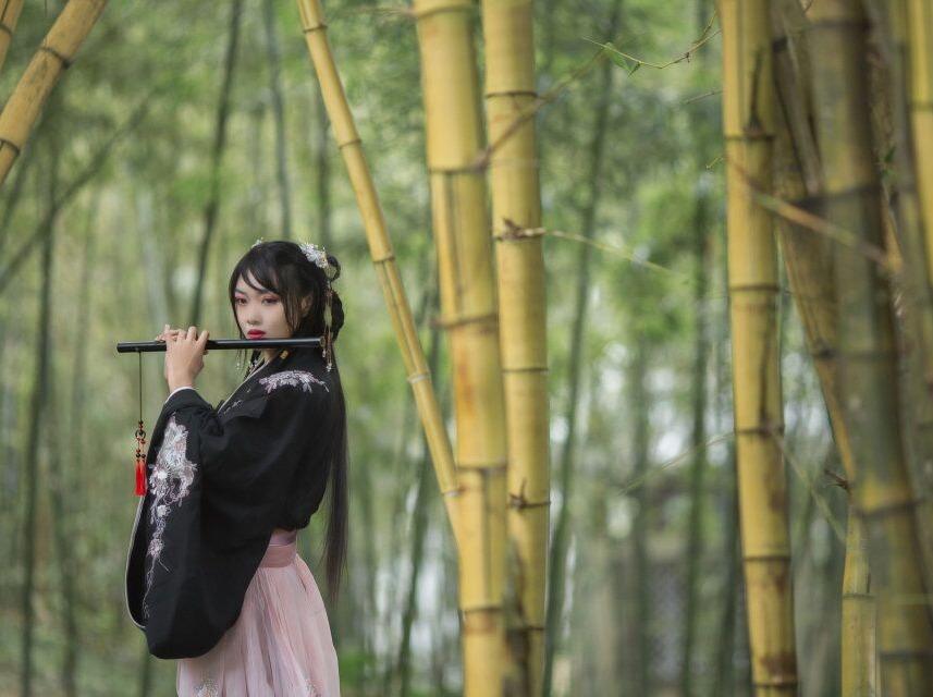 旗峰虎英公园免费野餐摄影活动