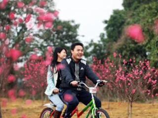 松山湖观油菜花摄影,赏桃花,浪漫单车