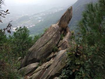 健身徒步歌乐山,尽享森林好风光
