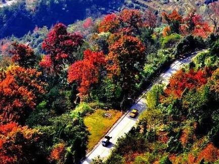 11月24-25日西递塔川徒步最美秋色