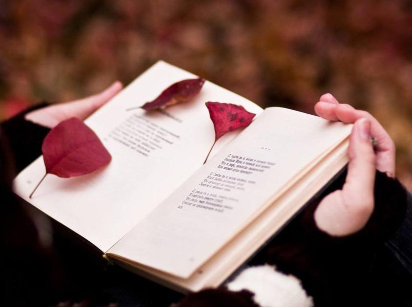 英文阅读会!读英文书,遇见更牛逼的自己!