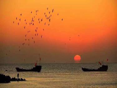 6.30走进金山嘴渔村,上海金山沙滩