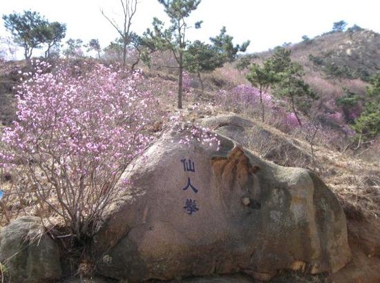 周日1月20日大珠山石门寺野路登山活动