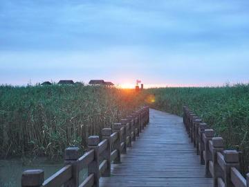 6月16-17(端午假期)崇明岛二日游