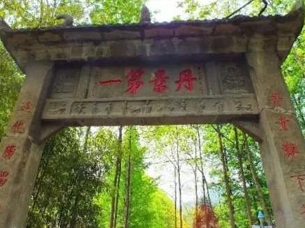 25号,周六,徒步丹景山赏梅,梅谷花正香