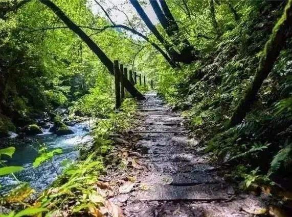 小鱼洞徒步旅行,用脚步来体验大自然