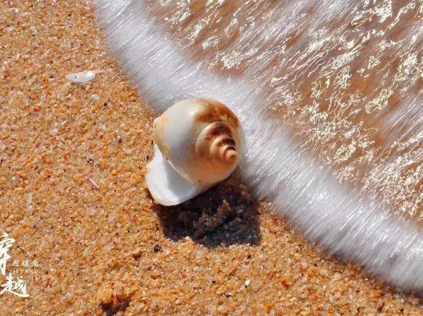 5.28穿越海螺角—捡海螺
