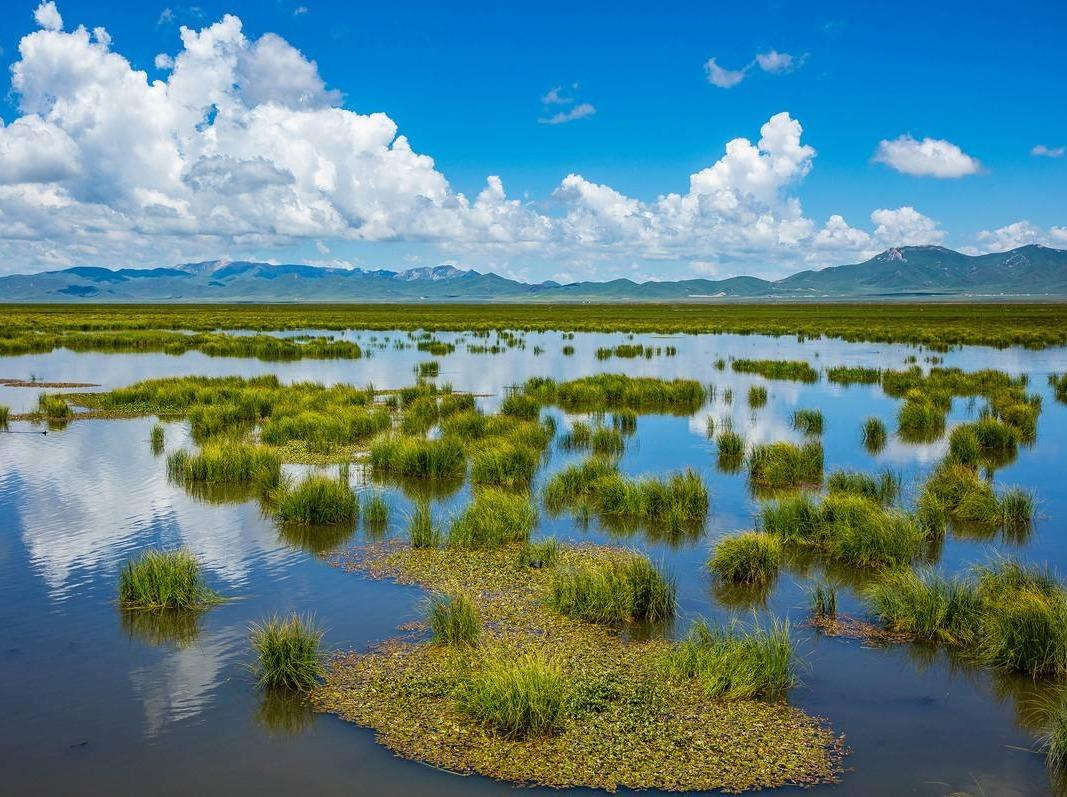 若尔盖花湖之旅,一起邂逅最美的高原湖泊