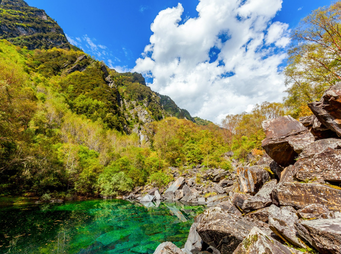 6月8号松坪沟两日游最美的川西风景线