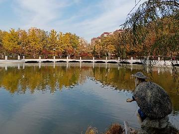 11月11日(周日)大连植物园赏秋美拍活