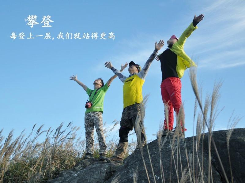 11月10日登惠州白云嶂,看漫山芦苇