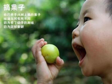 穿越感受竹林乡村小径~吃竹筒饭~摘三华李