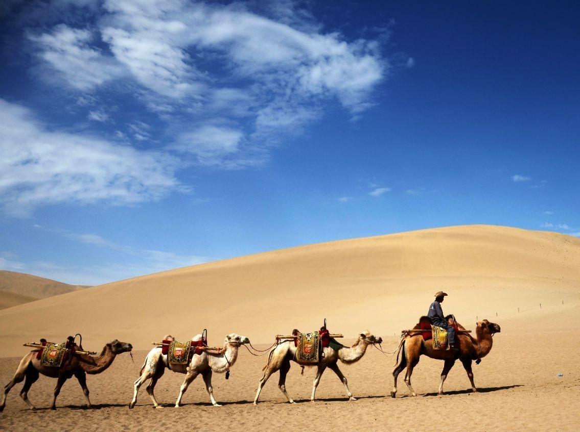 清明再聚库不齐沙漠,挑战孤独与荒凉
