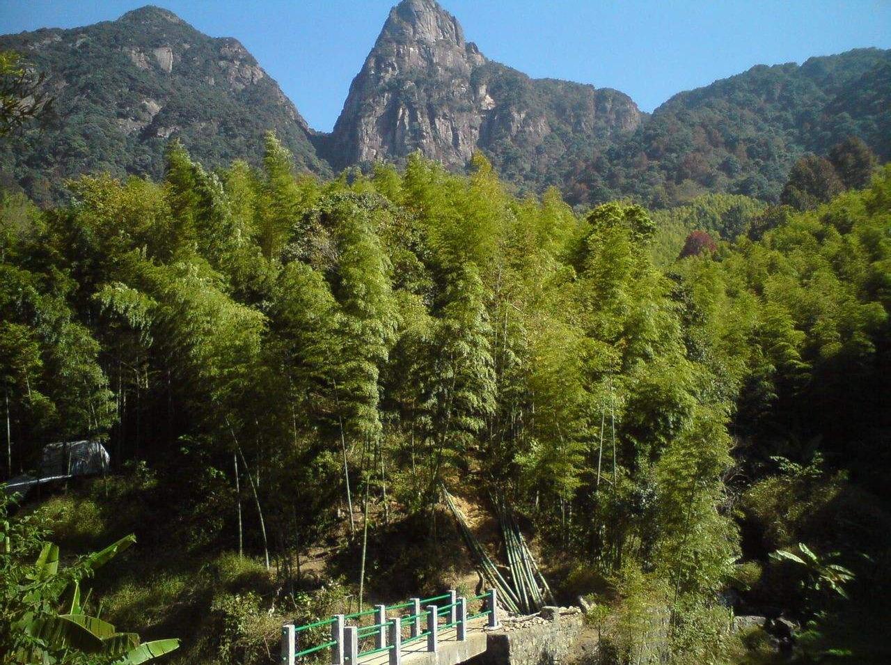 鸡枕山(广州第二峰)