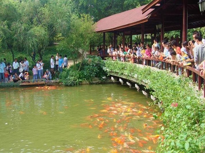 (掌上活动)相约东湖公园游山玩水