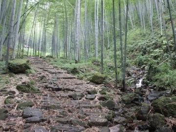 江都户外运动协会5月13日无锡军嶂山穿越