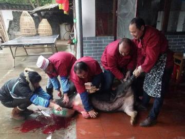 2月3日兴安马头山山庄杀年猪