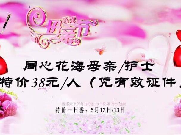 5月12日枝江同心花海一日游38元