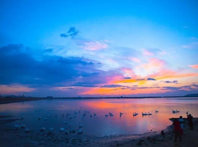 阳江海陵岛 漫步东方夏威夷 2天游