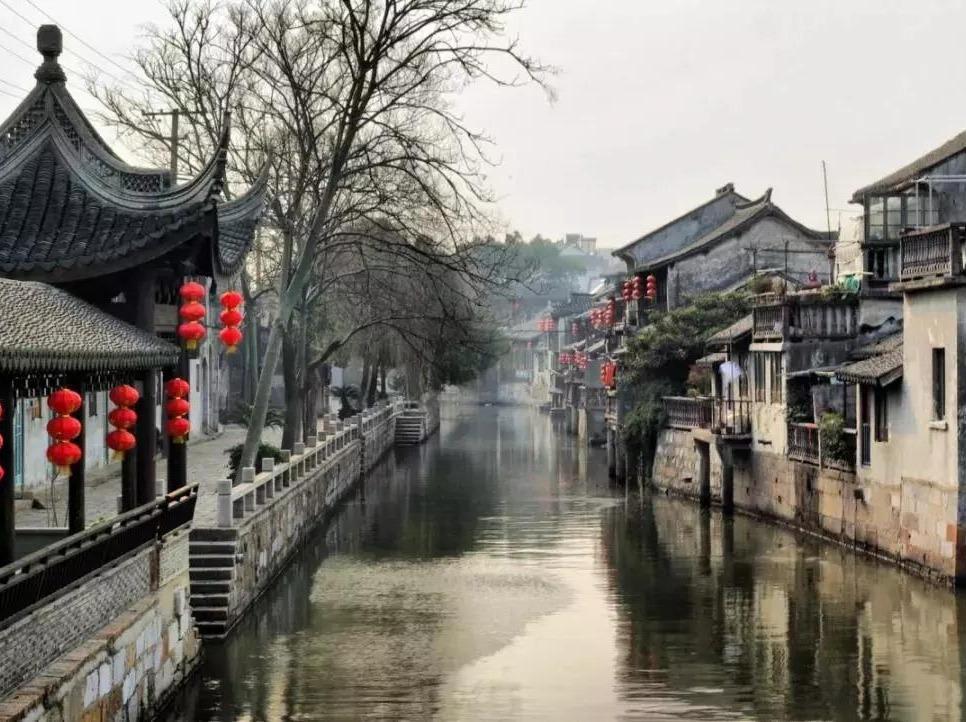 11月4日上海粉红花田、枫泾古镇1日。