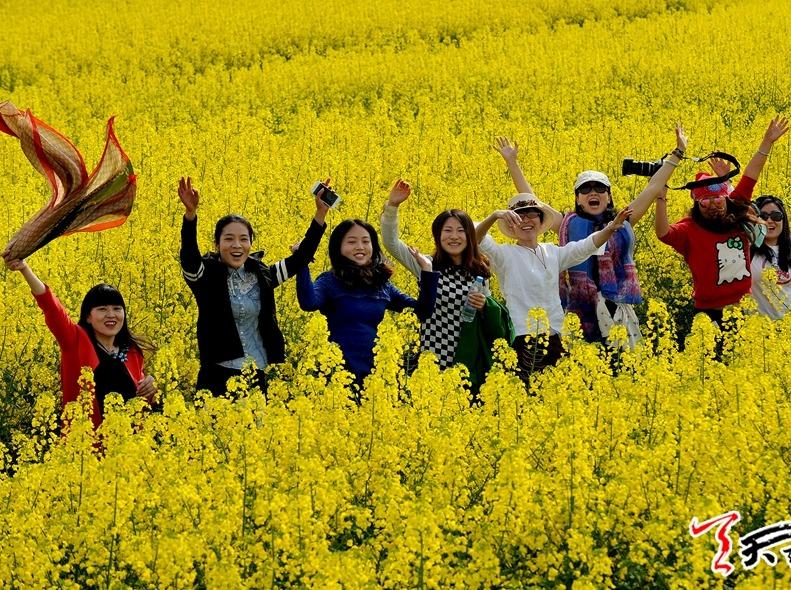 阳春赏油菜花,逛古镇,游黎坪公园三日活动