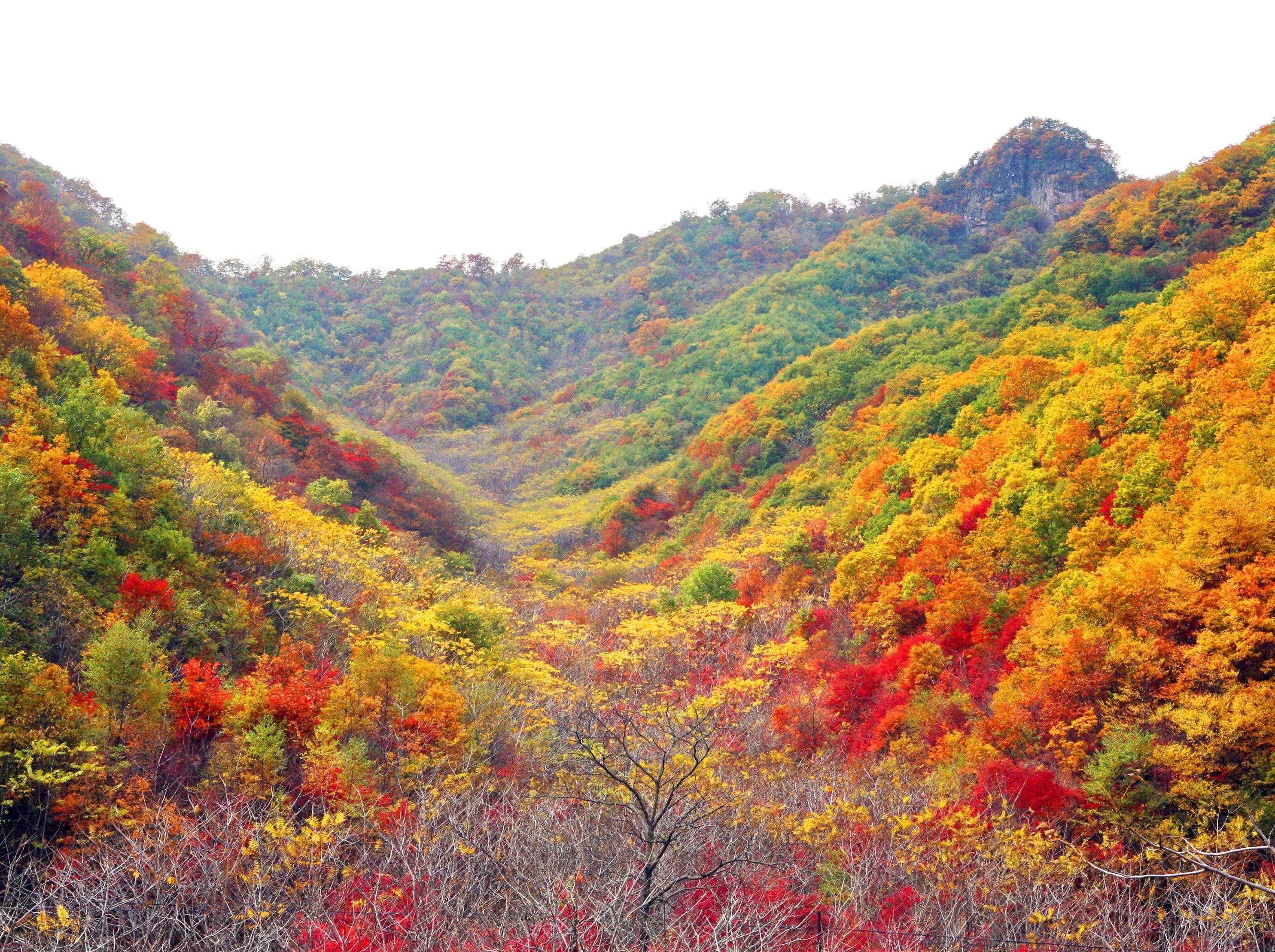 牙儿米登高山海子 看彩林 穿越赏红叶