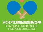 """中国砂板挑战赛""""超蓝世界杯""""宿州热身赛"""