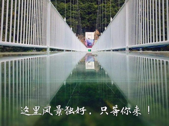 九龙谷挑战玻璃栈道,采摘枇杷一日游