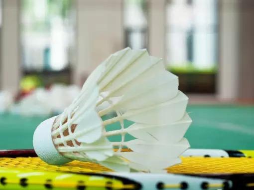 7月24日周二【羽毛球】羽毛球运动