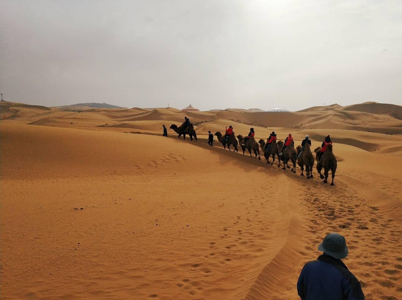 带着宝宝游草原看沙漠,量身打造深度3日游