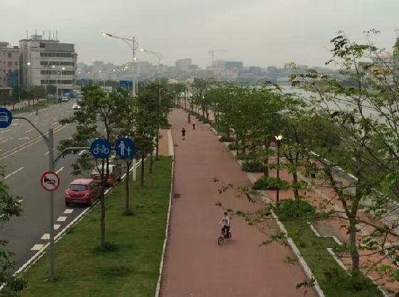9月9日虎门结伴跑步