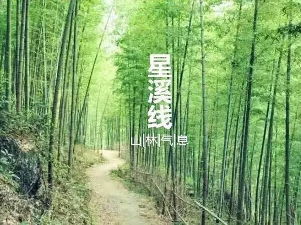 徒步广州最美入门级路线从化星溪线