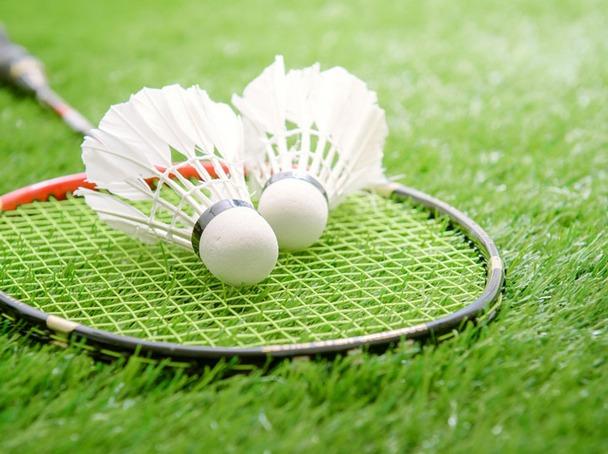羽毛球友谊赛