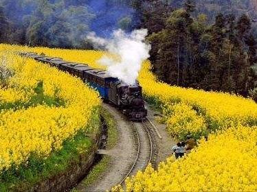3月4周六  开往春天的嘉阳小火车