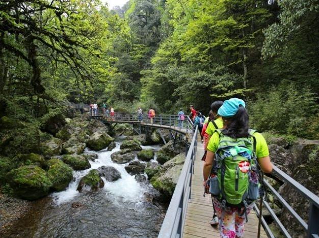 周六  漫步龙苍沟森林公园洗肺清凉游