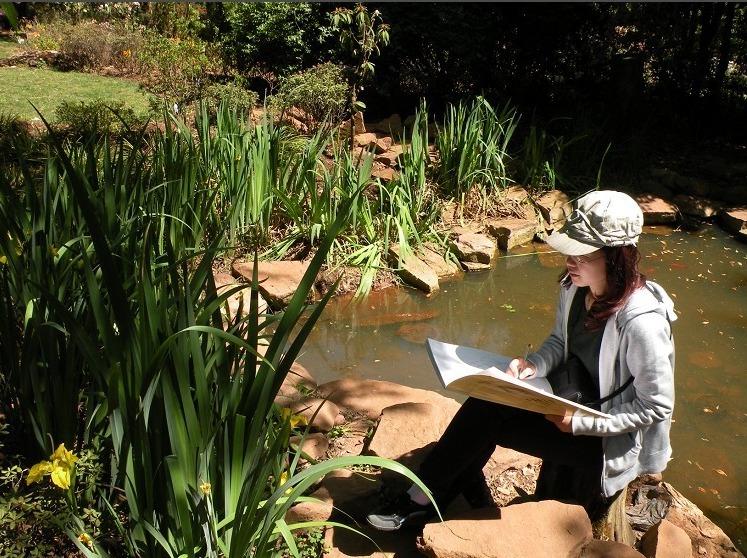 泰安植物园一日写生活动
