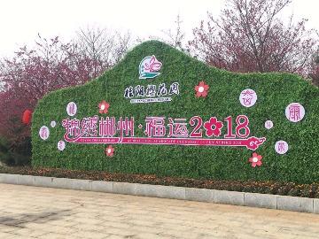 桂阳樱花园一日游