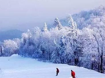 《春节》邀请各位神农架自助游滑雪之旅。