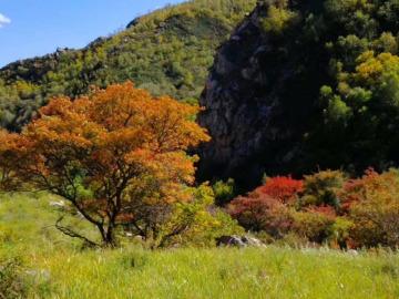 9月29日(周六)呼市小香山赏秋观景一日