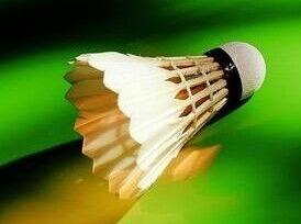 12月9号星期六 省体育馆羽毛球活动